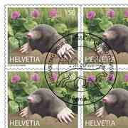 Animals in the city, Sheet «Mole» Sheet with 10 stamps «Mole» of CHF 1.50, self-adhesive, cancelled