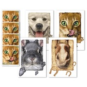 "Animal friends, Set of cards Set of 4 A6 picture postcards at CHF 1.00 each, with the motifs ""Dog"", ""Cat"", ""Rabbit"" and ""Horse"", plus 4 ""Cat"" special stamps (not affixed)$"