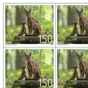 Animal families, Sheet «Lynx» Sheet with 10 stamps «Lynx» of CHF 1.50, self-adhesive, mint
