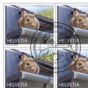 Animals in the city, Sheet «Wood mouse» Sheet with 10 stamps «Wood mouse» of CHF 1.00, self-adhesive, cancelled