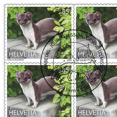 Animals in the city, Sheet «Stoat» Sheet with 10 stamps «Stoat» of CHF 0.85, self-adhesive, cancelled